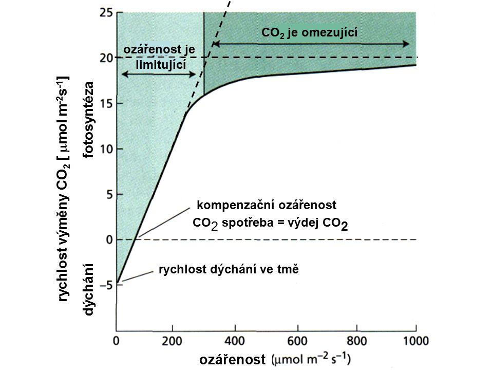 rychlost výměny CO2 [ mmol m-2s-1]